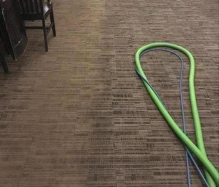 Commercial carpet cleaning in action.