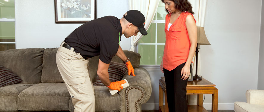 Chesterfield, MO carpet upholstery cleaning